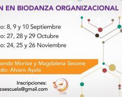 Formación en Biodanza Organizacional (Septiembre a Noviembre)