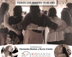 Grupo Inicio Biodanza