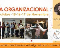 Formación Biodanza Organizacional